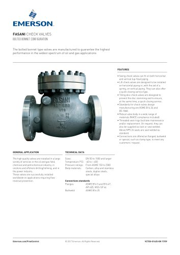 FASANI CHECK VALVES BOLTED BONNET CONFIGURATION