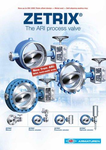 ZETRIX - ARI process valve