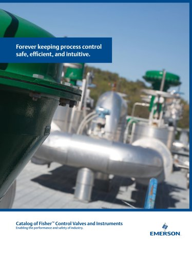 ™ Control Valves and Instruments