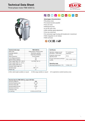 Three-phase motor FBM 4000 Ex