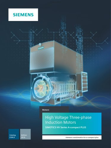 High Voltage Three-phase Induction Motors
