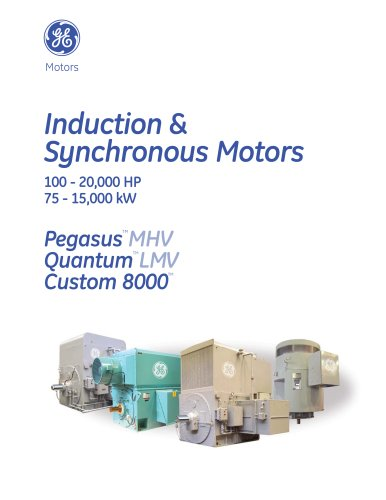 Induction and Synchronous Motors