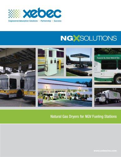 Natural Gas NGX Solutions