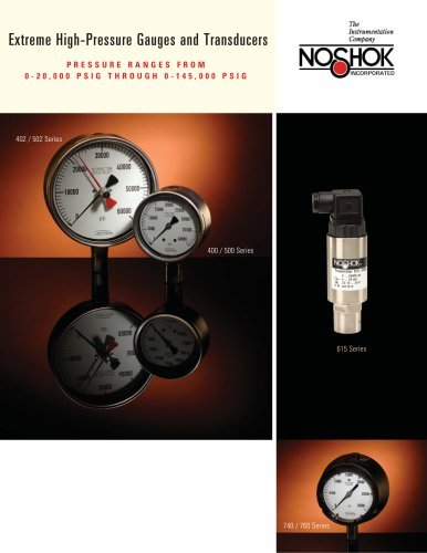 Extreme High Pressure Gauges & Transducers NK06EHP