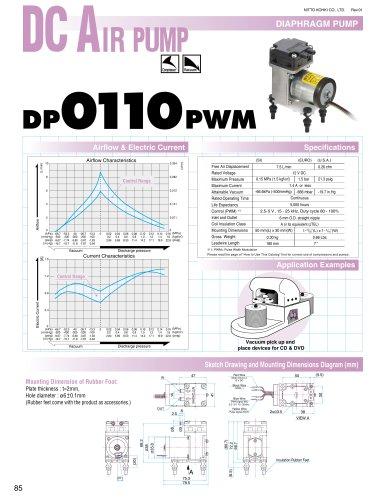 DP 0110PWM