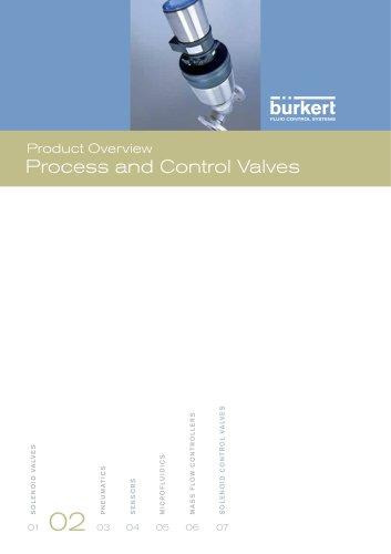 Process & Control Valves