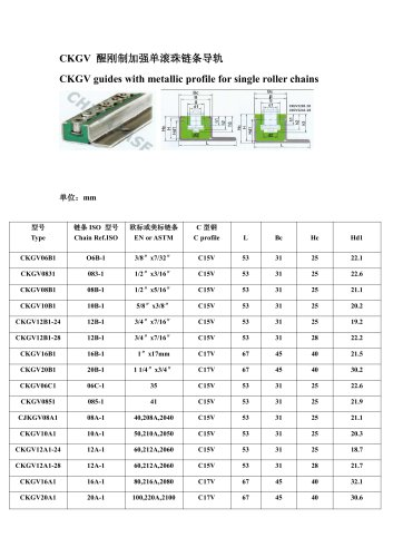 Chinabase?CKGV guides with metallic profile for single roller chains?Guides for roller chains