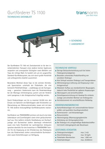 Gurtförderer TS 1100