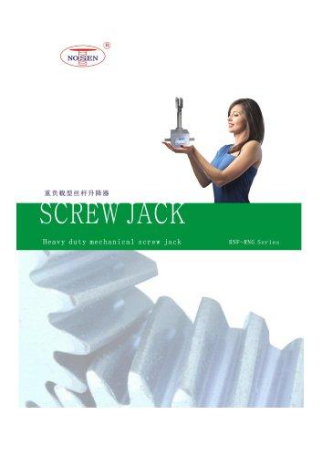 Ball screw jack RNG