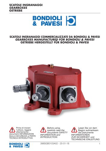 Parallel shaft Gearboxes - Manufactured for Bondioli & Pavesi