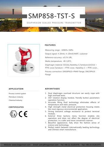 LEEG Instruments Diaphragm Sealed Pressure transmitter