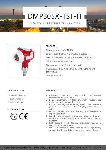 LEEG Instruments Smart Pressure Transmitter DMP305X-TST