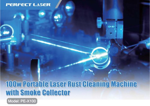 100w Portable Laser Cleaning Rust Paint Removal Machine with Smoke Collector