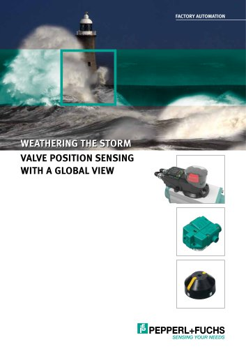 Valve Position sensing with a global view