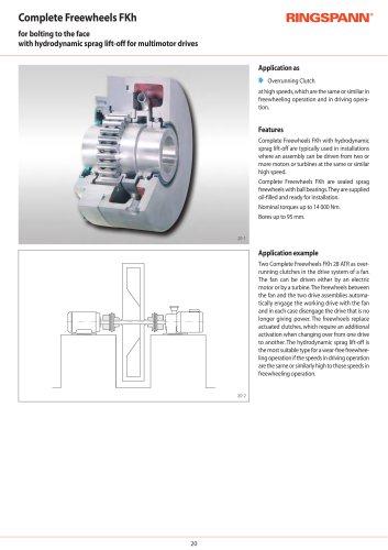 Complete Freewheels FKh RINGSPANN