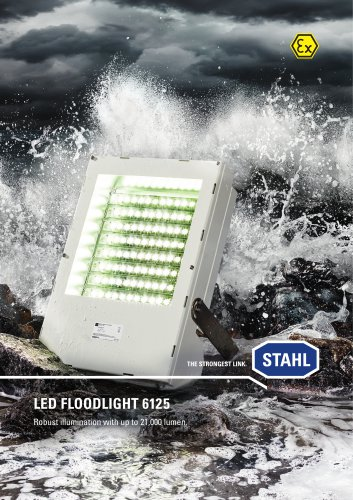 LED floodlight 6125